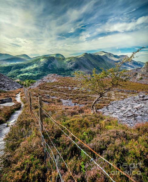 Ladders Photograph - Welsh Mountains by Adrian Evans