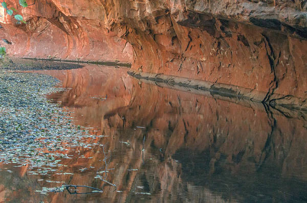Photograph - West Fork Reflection by Tam Ryan