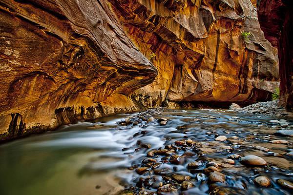 Wall Art - Photograph - Wet Feet by Juan Carlos Diaz Parra