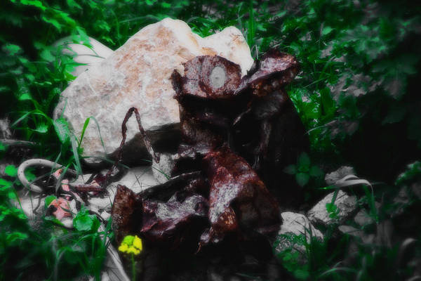 Digital Art - What Is It - Series Xii by Doc Braham