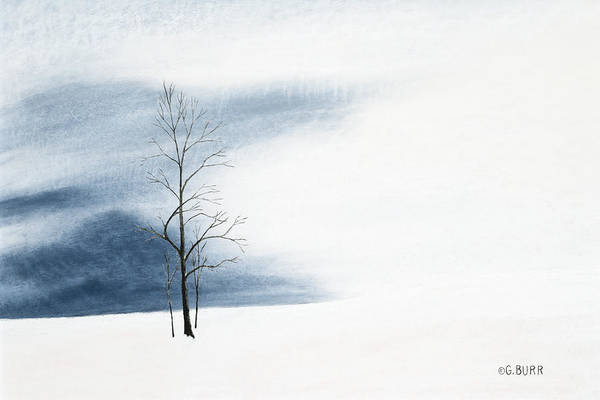 Pastel - Whiteout by George Burr