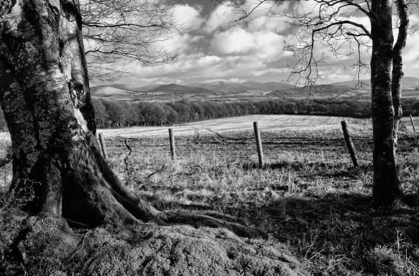 Wall Art - Photograph - Wicklow Countryside by Fergal Gleeson
