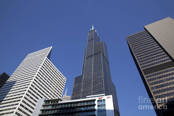 Photograph - Willis Tower In Chicago by Jim West