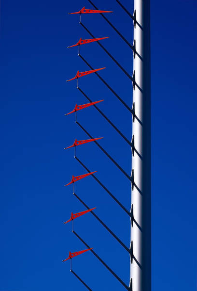 Photograph - Wind Arrows by Rona Black