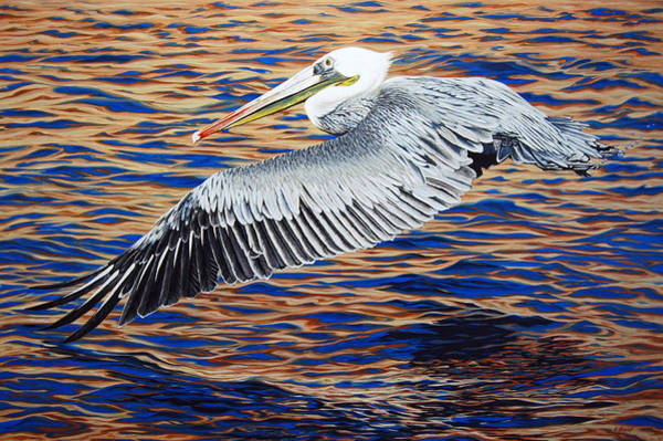 Painting - Wind Surfer by Cheryl Fecht