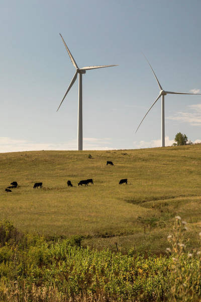 Wall Art - Photograph - Wind Turbines by Jim West/science Photo Library