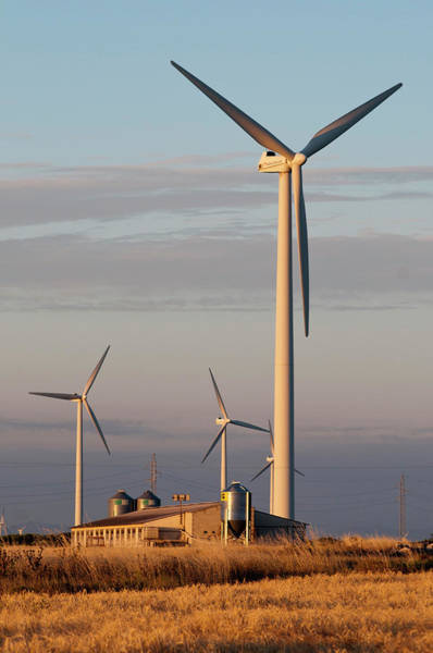 Generators Photograph - Wind Turbines by Marco Ansaloni / Science Photo Library