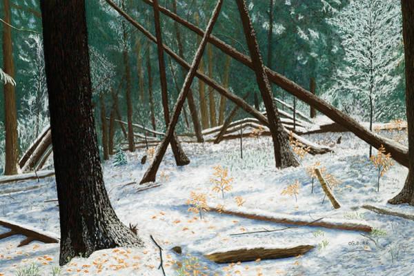 Windswept Woods Art Print