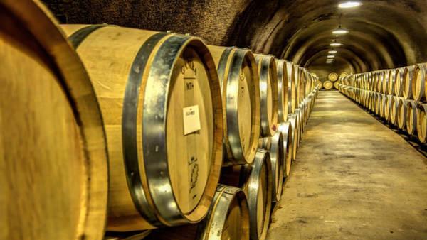 Photograph - Wine Barrels by Bill Dodsworth