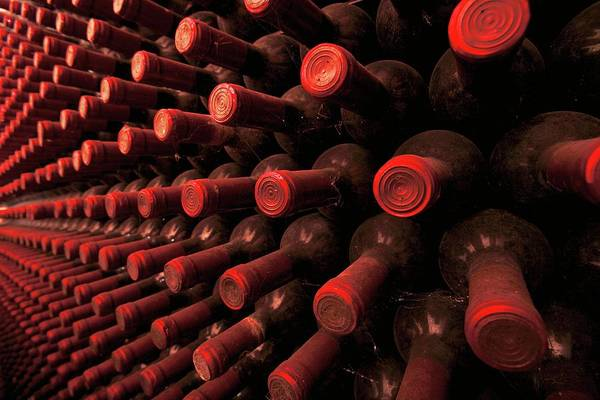 Rack Photograph - Wine Bottles In A Rack by Mauro Fermariello/science Photo Library