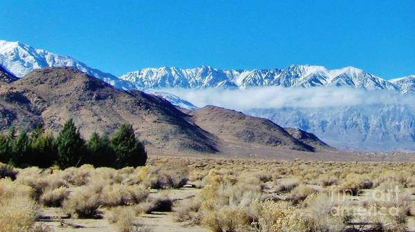 Bishop Hill Photograph - Winter In The Desert by Marilyn Diaz