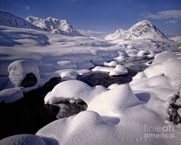 Photograph - Winter Wonderland by Edmund Nagele
