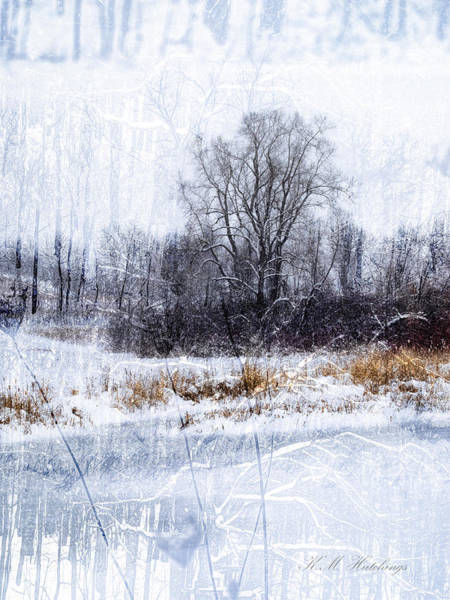 Wall Art - Photograph - Winter's Here by Keith Hutchings