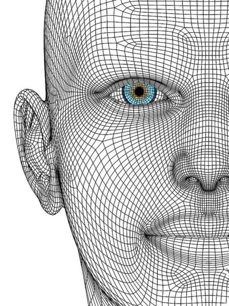 Wireframe Photograph - Wireframe Head by Alfred Pasieka