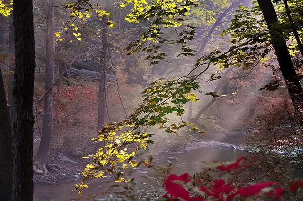 Photograph - Wissahickon Autumn by Bill Cannon