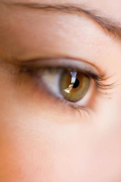 Eye Ball Photograph - Woman's Eye by Ian Hooton/science Photo Library