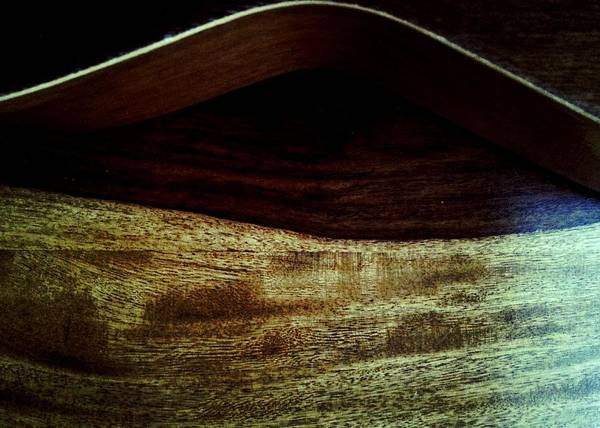 Photograph - Wood Body Horizontal  by Abbie Shores