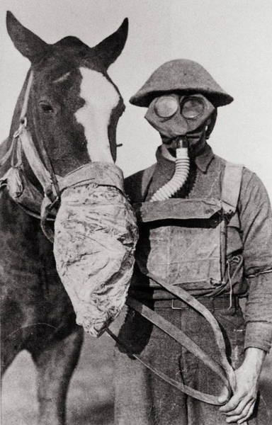 Wwi Photograph - Wwi Gas Masks by Science Photo Library