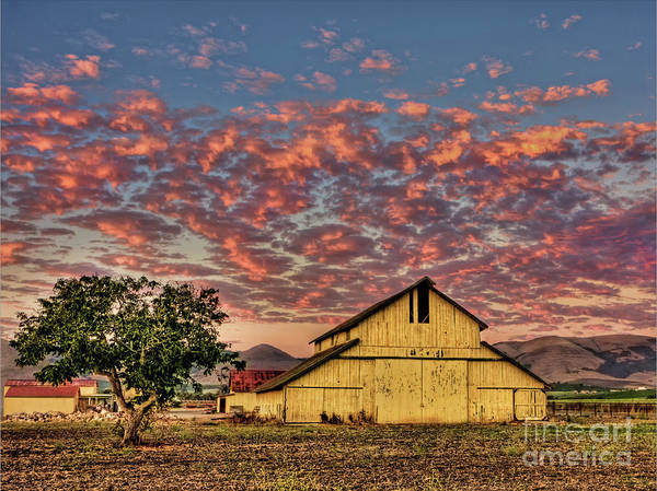Photograph - Yellow Barn by Beth Sargent