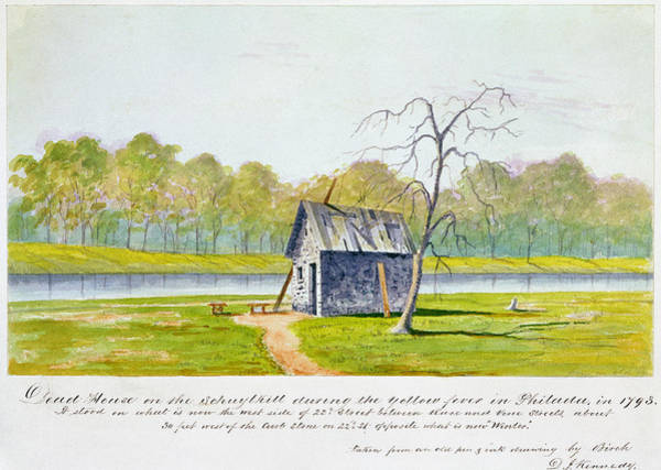 Painting - Yellow Fever, 1793 by Granger
