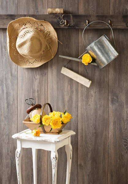 Allotment Wall Art - Photograph - Yellow Roses by Amanda Elwell