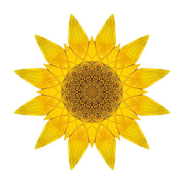 Photograph - Yellow Sunflower X Flower Mandala White by David J Bookbinder