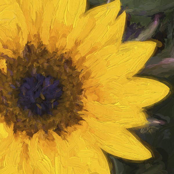 Yellow Sunflower Painterly Art Print