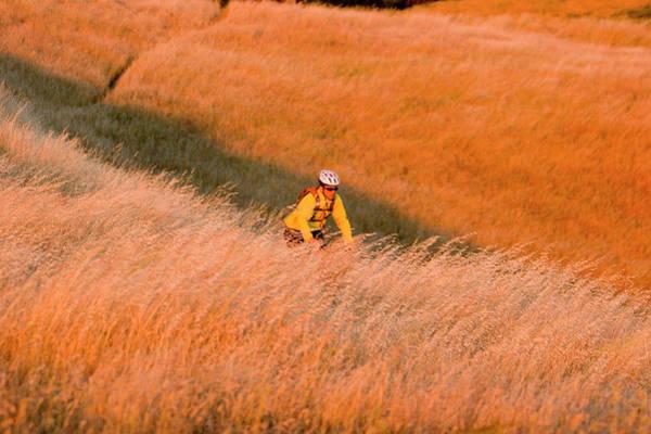 Wall Art - Photograph - Young Man Biking Near Bolinas Ridge Mt by Justin Bailie