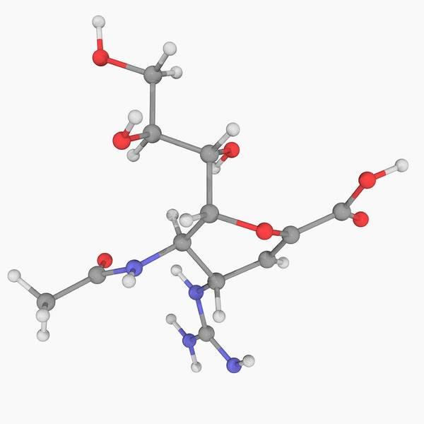 Neuraminidase Photograph - Zanamivir Drug Molecule by Laguna Design/science Photo Library