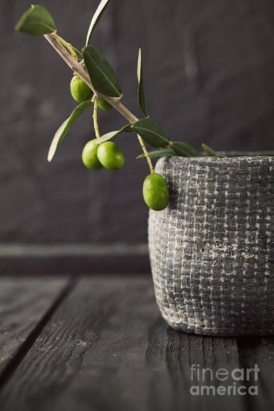 Dark Olive Green Wall Art - Photograph - Fresh Olives  by Mythja  Photography