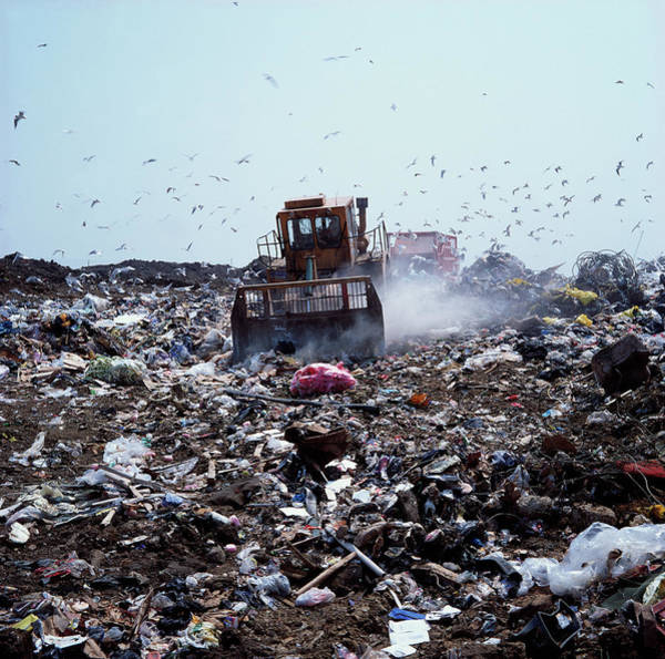 Bulldozer Photograph - Landfill Site by Robert Brook/science Photo Library