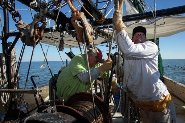 Us West Coast Photograph - Shrimp Fishing by Jim West