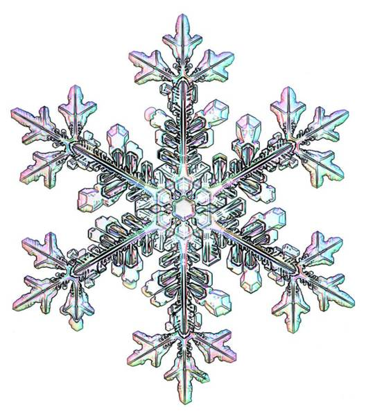 Wall Art - Photograph - Snowflake by Kenneth Libbrecht
