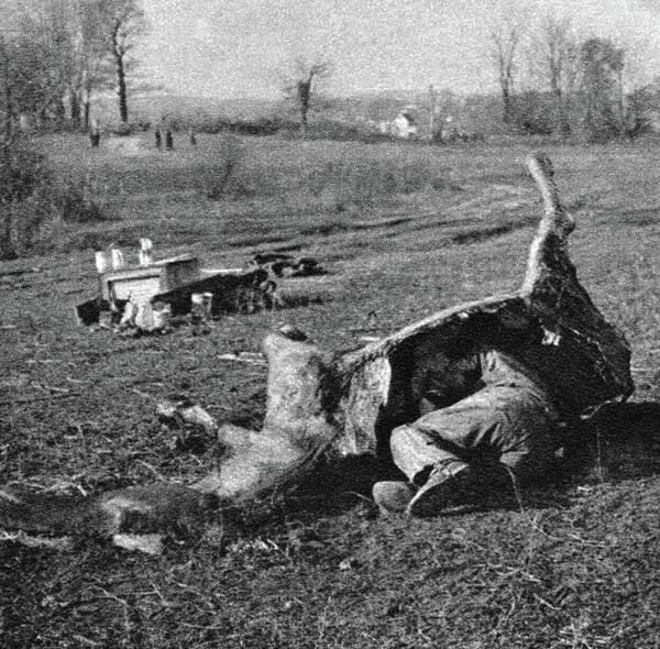 Wall Art - Photograph - World War I Camouflage by Granger