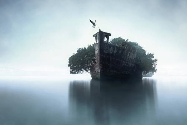 Ship Wreck Photograph - 100 Years Later by Terry F