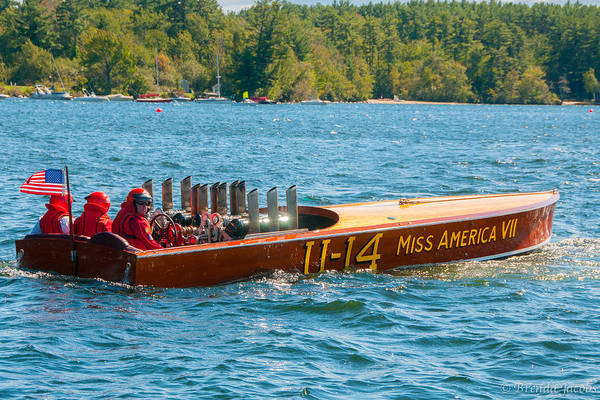 Photograph - 11-14 Miss America Vii by Brenda Jacobs