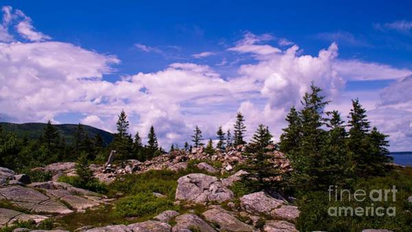 Photograph - Acadia National Park. by New England Photography
