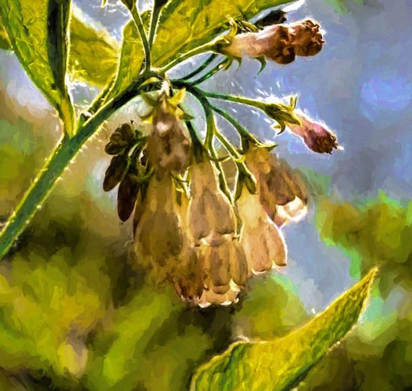 Digital Art - 11 Artistic Painterly Wild Flower Lightened By Sun by Leif Sohlman