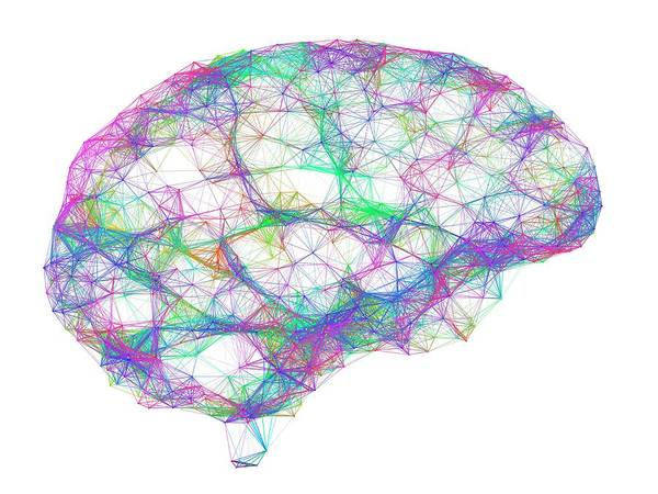 Wall Art - Photograph - Brain by Alfred Pasieka/science Photo Library
