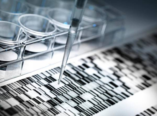 Genetic Code Photograph - Dna Research by Tek Image