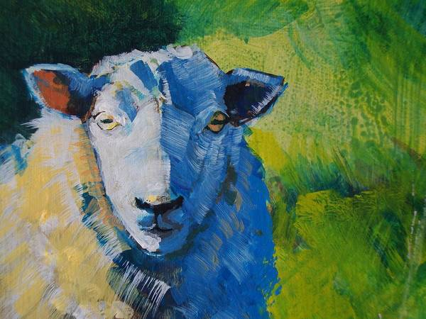 Painting - Sheep by Mike Jory