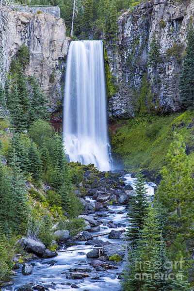 Wall Art - Photograph - Tumalo Falls by Twenty Two North Photography