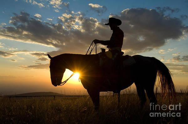 Photograph - Cowboy by John Shaw