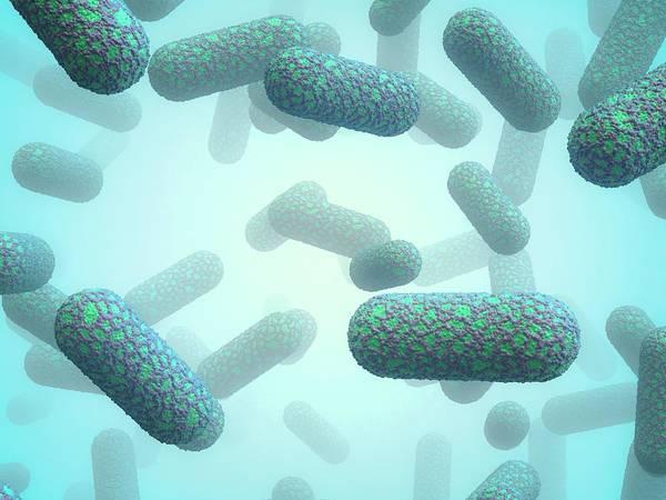 Bacilli Wall Art - Photograph - E. Coli Bacteria by Maurizio De Angelis