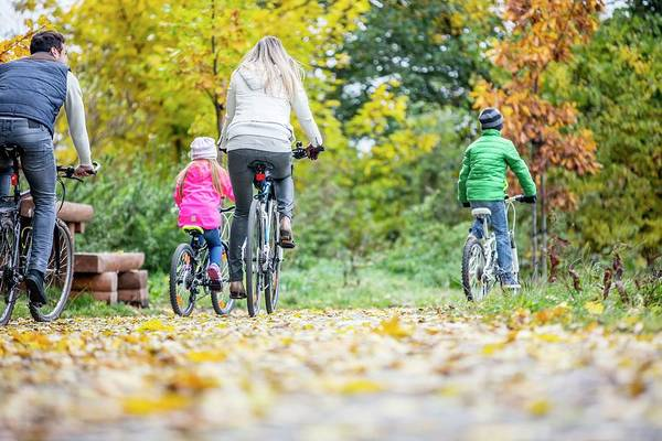 Wall Art - Photograph - Family Cycling Together by Science Photo Library