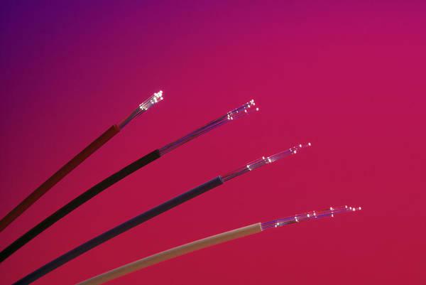 Tele Photograph - Fiber Optics by Phillip Hayson