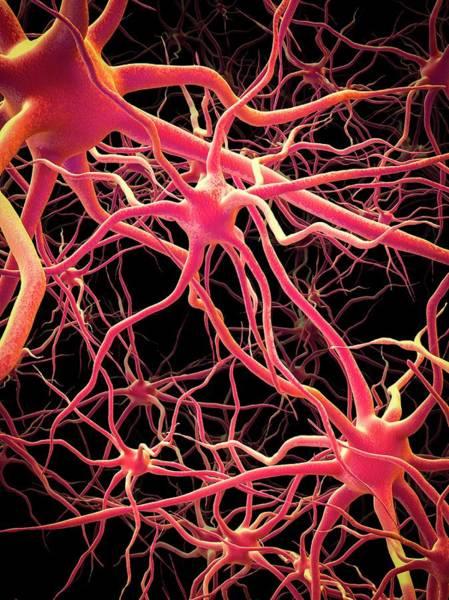 Neural Network Art Print by Maurizio De Angelis