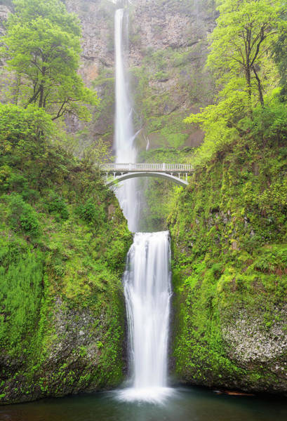 Wall Art - Photograph - Oregon, Columbia River Gorge National by Jamie and Judy Wild