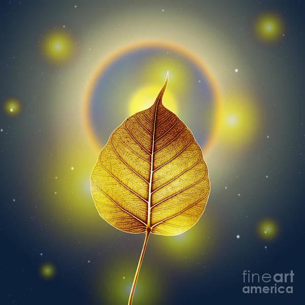 Sacred Mixed Media - Pho Or Bodhi by Atiketta Sangasaeng