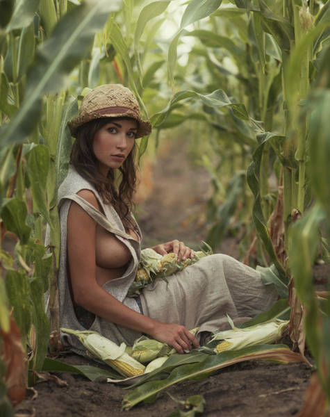Corn Field Photograph - Untitled by David Dubnitskiy
